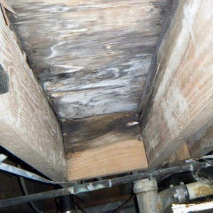 Crawl Space Moisture Inspection